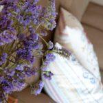 Detail flowers, Finca Las Nuevas