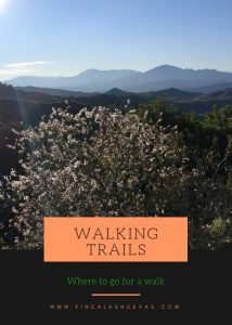 Ebook Walking trails